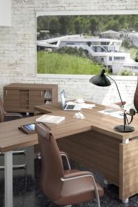 Мебель для руководителя: Серия